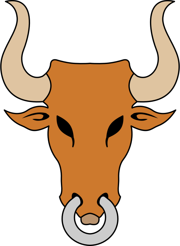 Bull's head (colour)