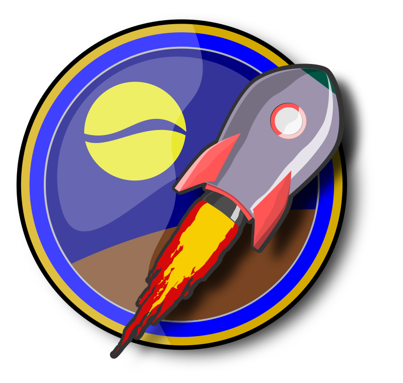 Spaceship on insignia