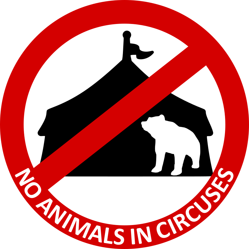 No Animals in circuses 3