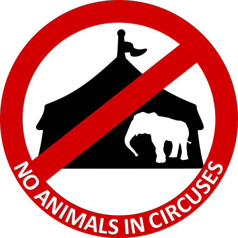 No Animals in circuses 4