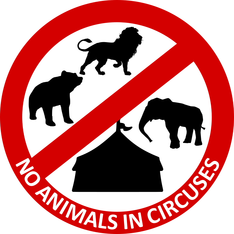 No Animals in circuses 5