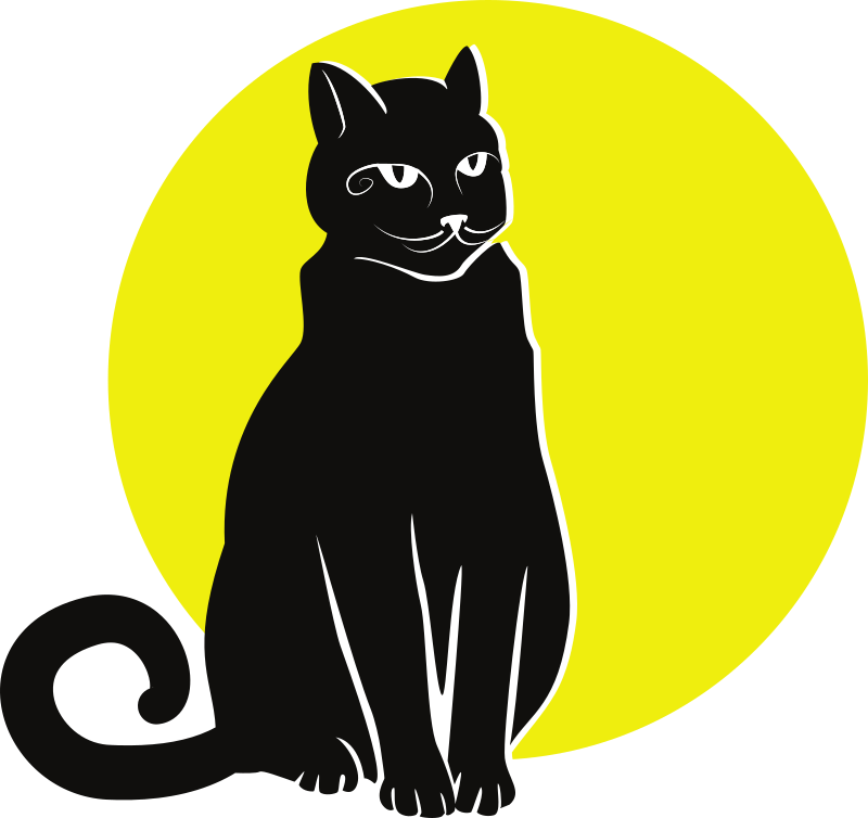 Black cat on yellow background