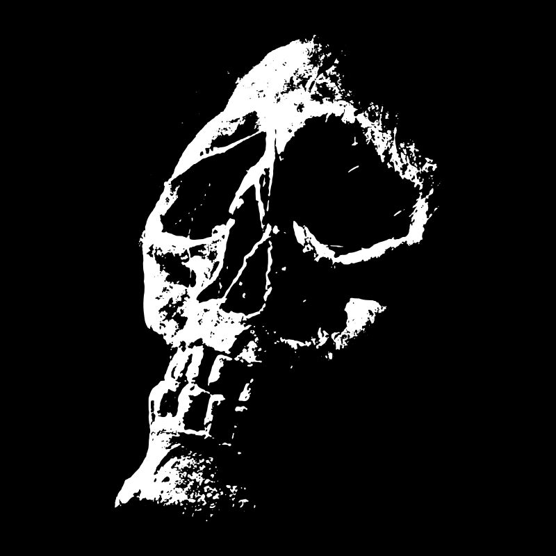 Night of the living dead title screen skull