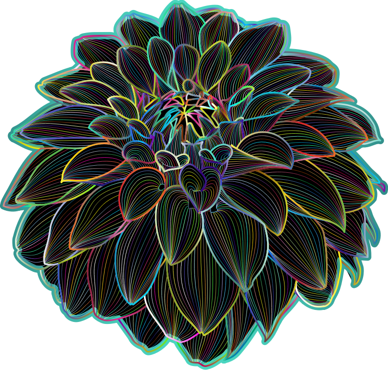 Polyprismatic Dahlia