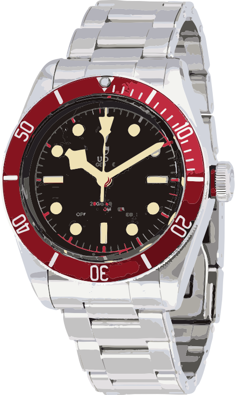 swiss watch in white gold and red - horlogerie