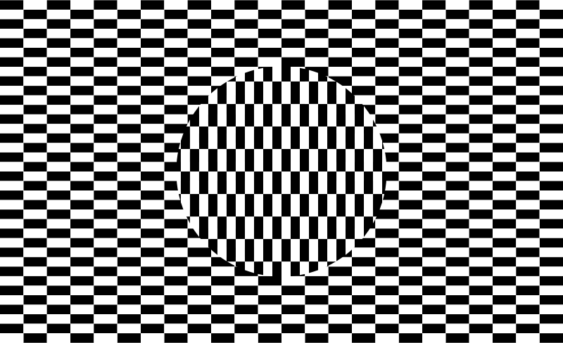 Optical Illusion Checkerboard