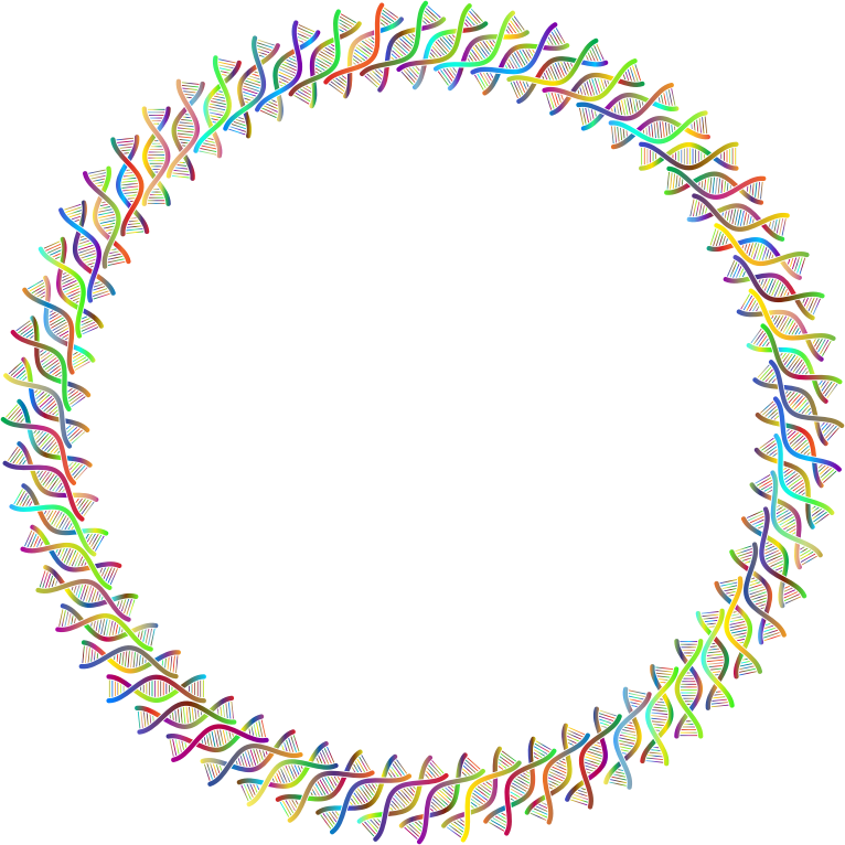 DNA Helix Frame III Polyprismatic