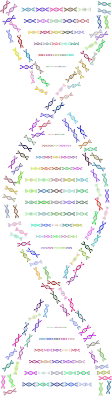 DNA Helix Fractal Prismatic