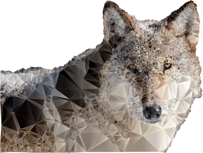 Low Poly Snow Wolf