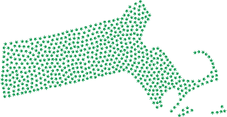 Massachusetts Marijuana Green