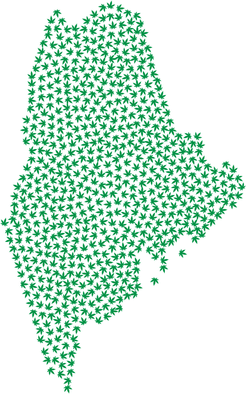 Maine Marijuana Green