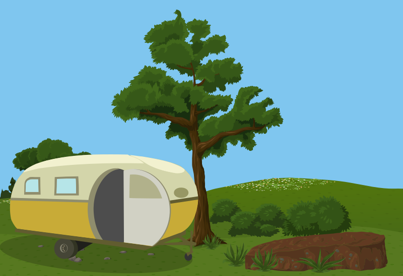 Camper in the Forest