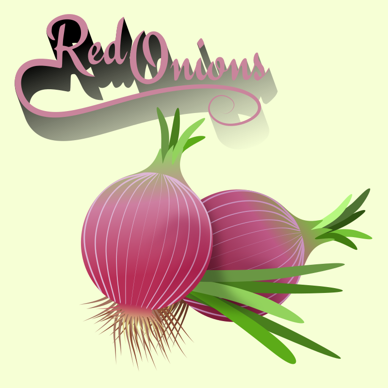 red onions 01022019