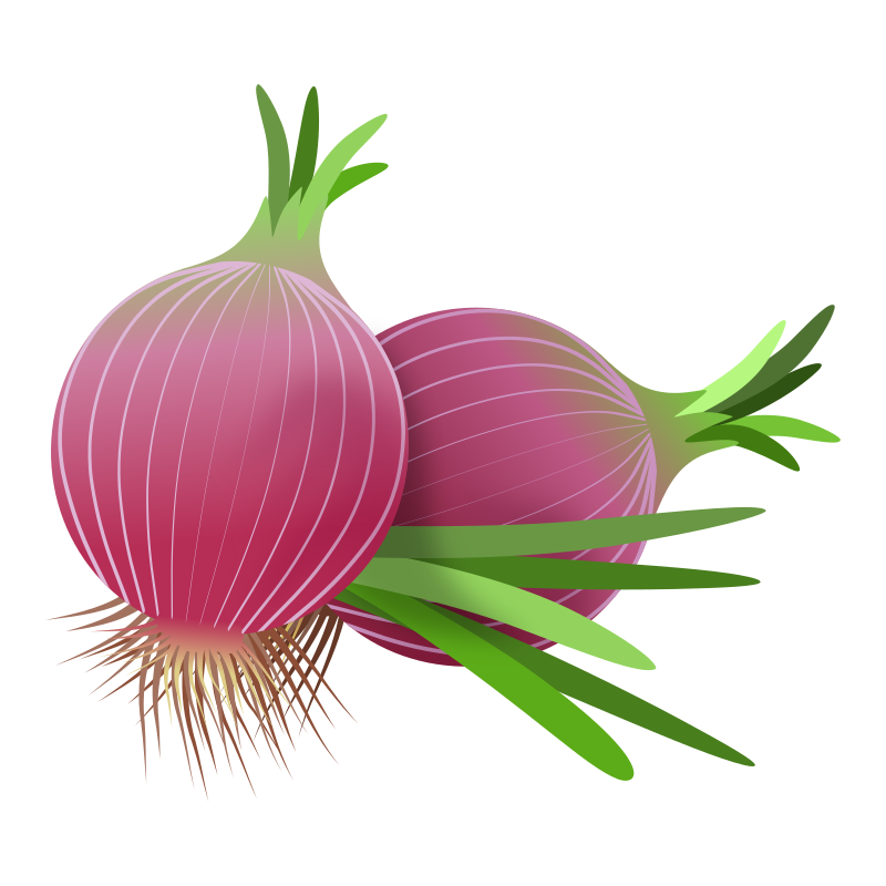 red onions 010220192
