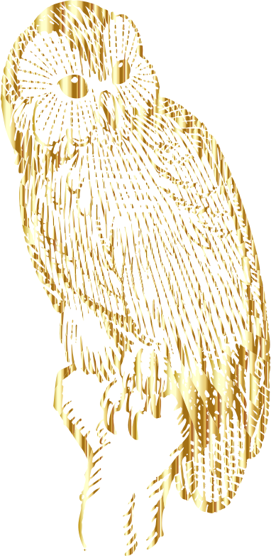 Vintage Owl Line Art Gold No BG