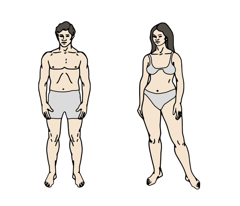 Body Parts Chart