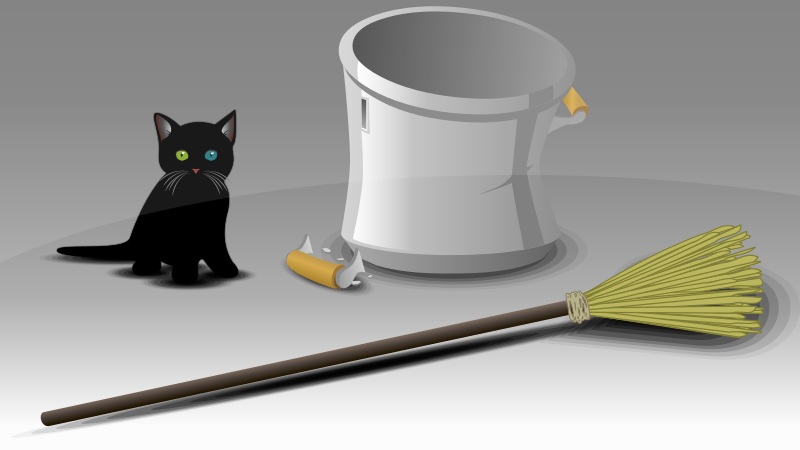 Black Cat and Broom