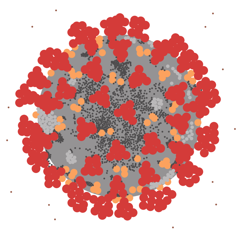 COVID-19 virus ultrastructure