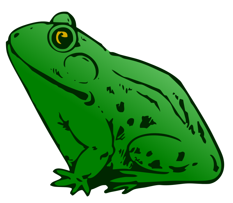 Frog - New Version
