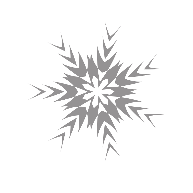 Snowflake particle