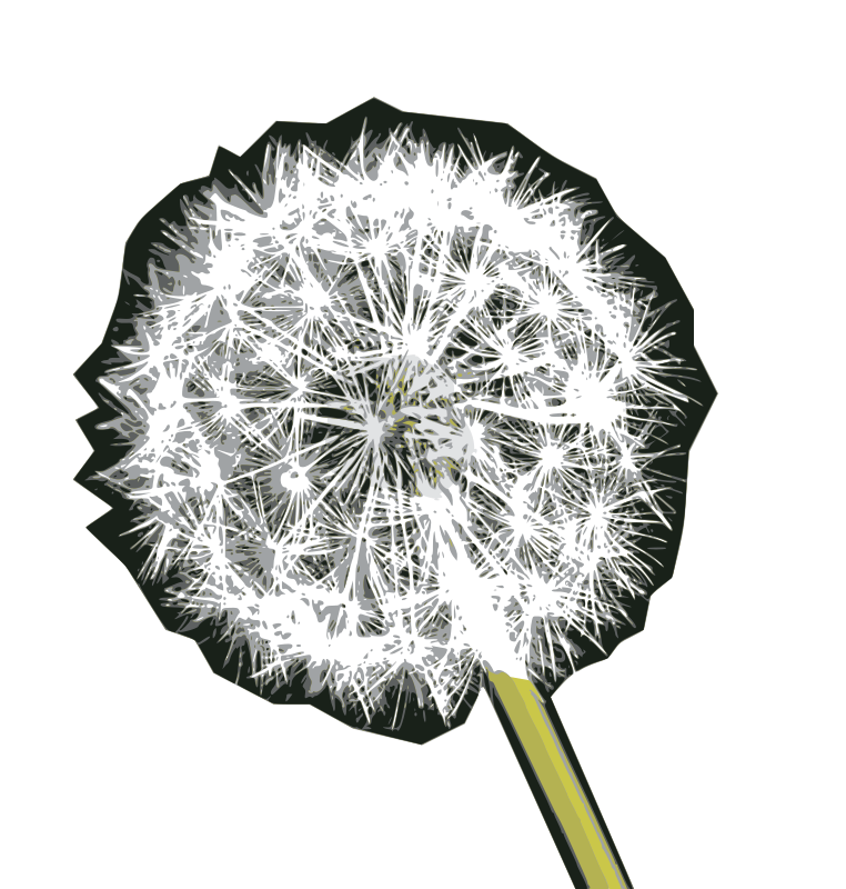 Blown on this Dandelion