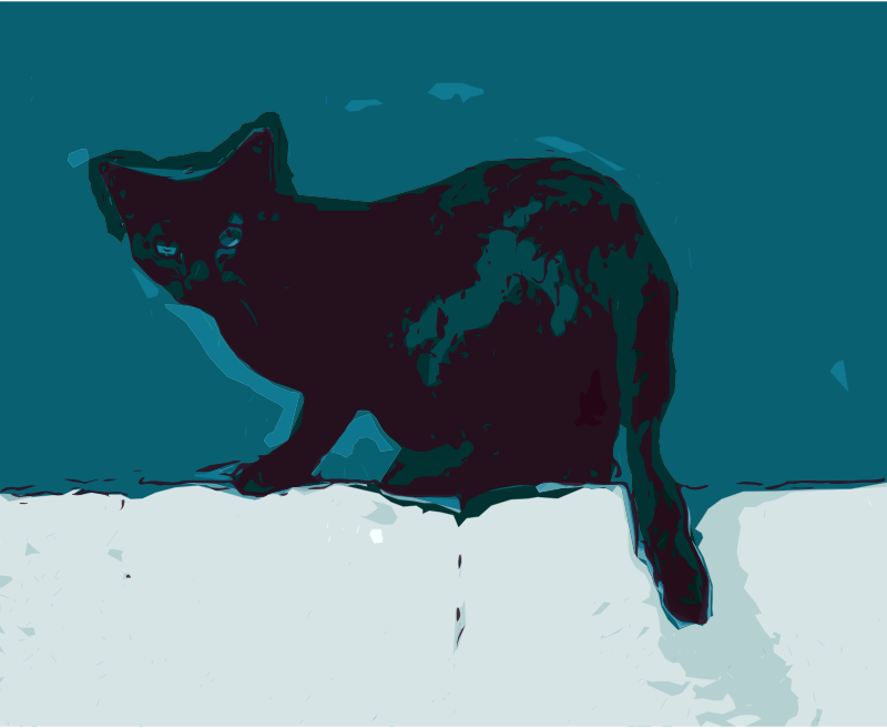 Cat on a Wall - Night