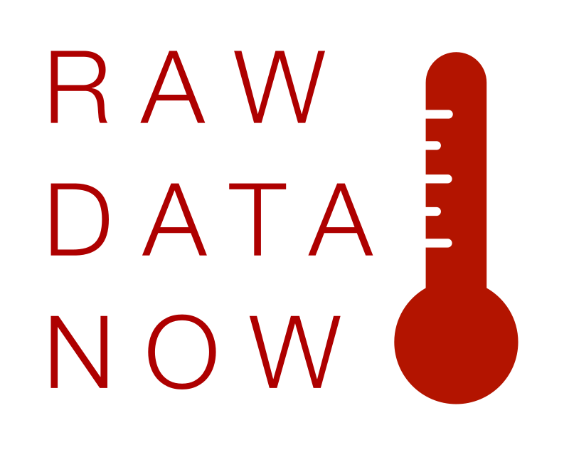 RAW DATA NOW Thin type Thermometer Logotype