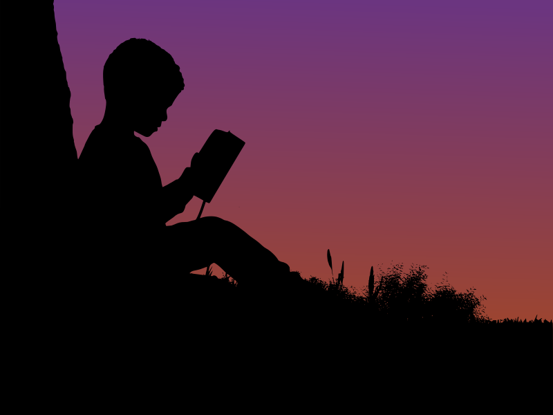 Boy reading in sunset