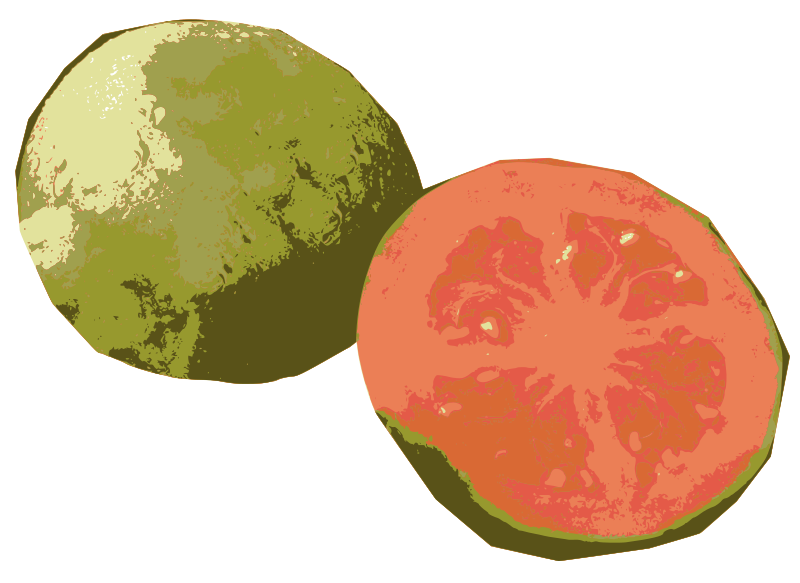 Sliced Open Guava