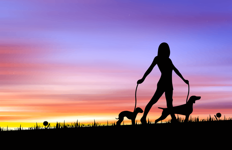 Woman Walking Dogs at Sunset - Remix