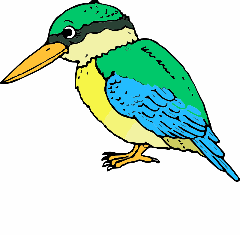 A Kingfisher
