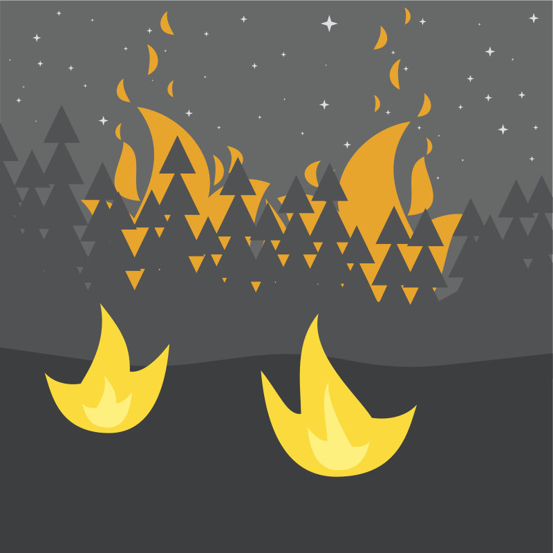 Night Forest Fires