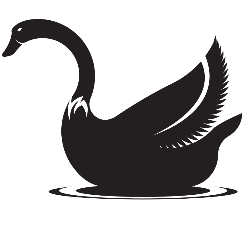 Silhouette of a swan