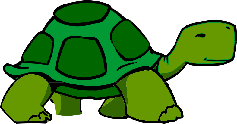 walking turtle or tortoise #2
