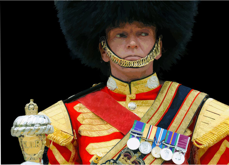 Drum Major Scots Guards