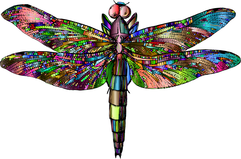 Antique Dragonfly Chromatic