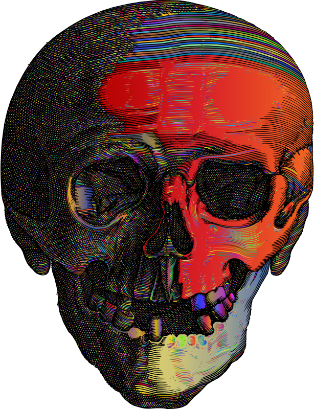 Detailed Skull Line Art Polyprismatic