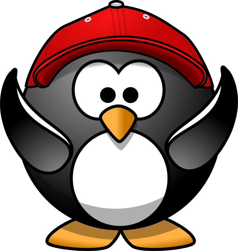 Happy penguin with cap