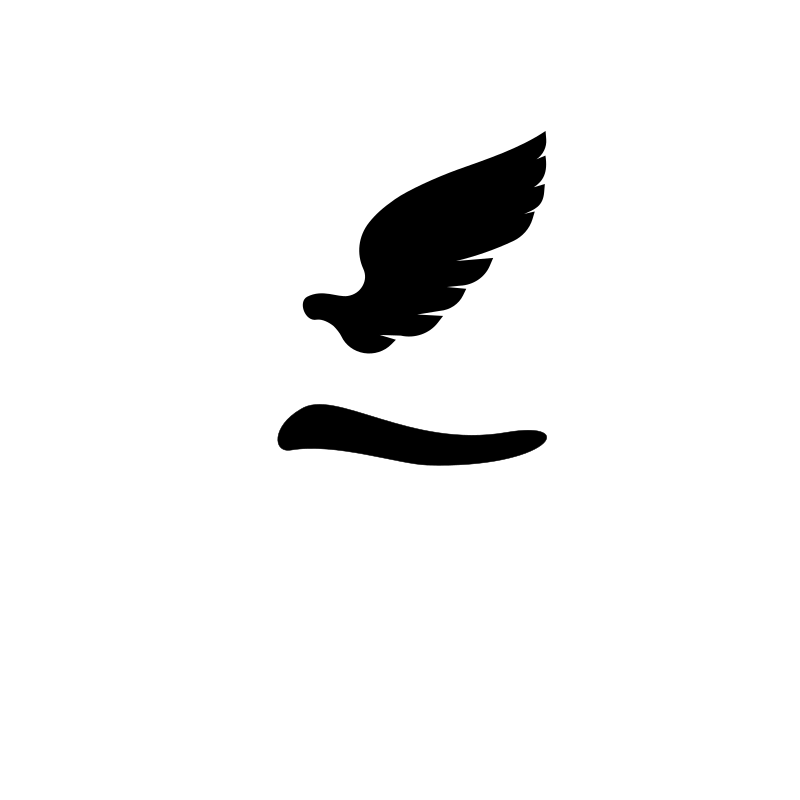 Wing and Tail Silhouette