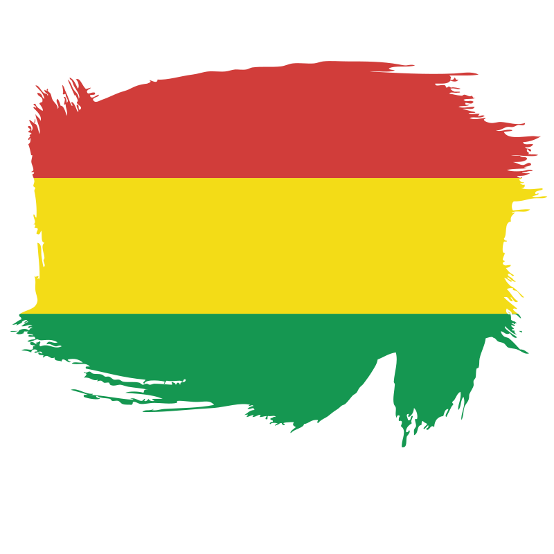 Flag of the State of Bolivia brush