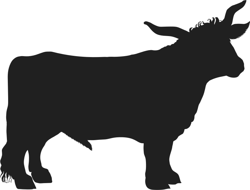 Vintage Ox Silhouette