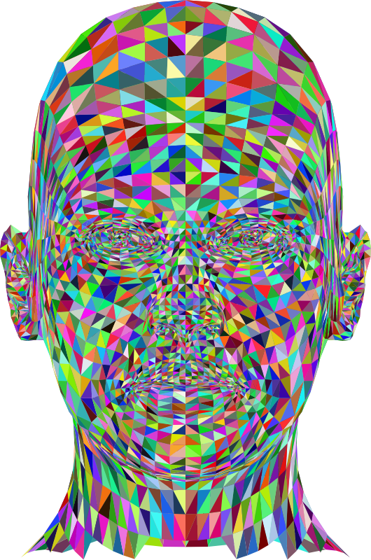 Wireframe Man Head Colorful