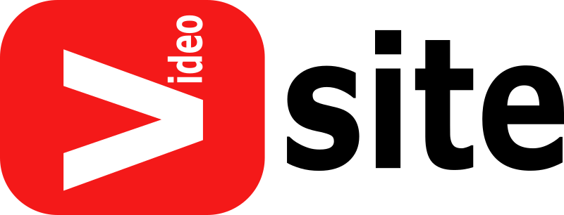 Fake Video Site Logo