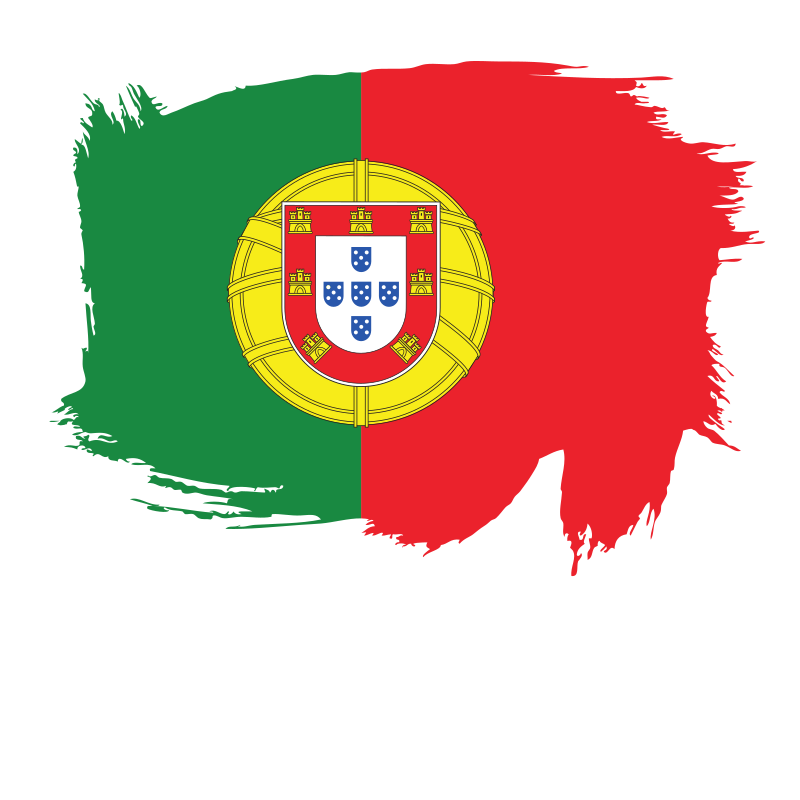 Painted flag of Portugal