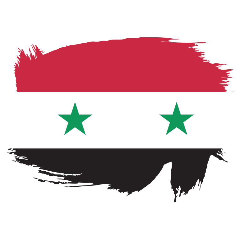 Painted flag of Syria