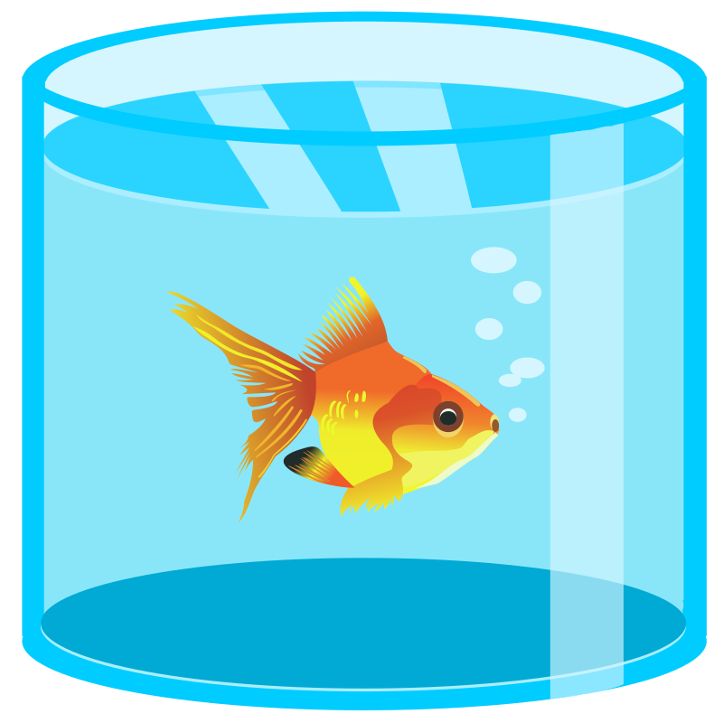 Aquarium with golden fish