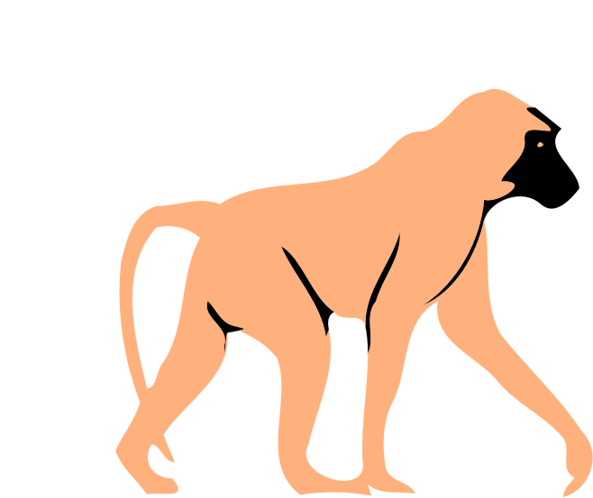 simple baboon