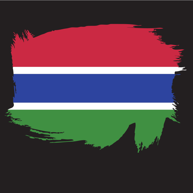 Painted flag of Gambia