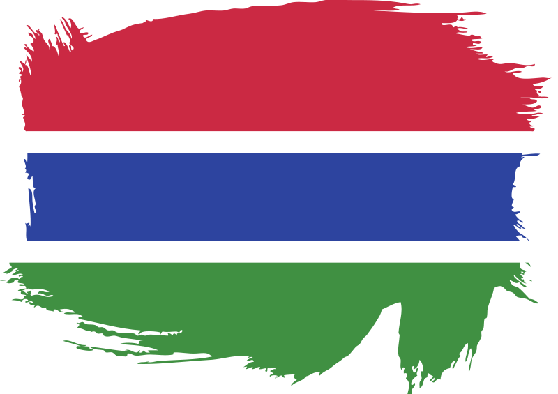 Gambia painted flag