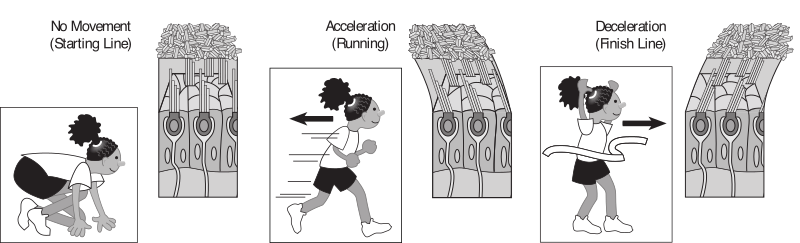 Kids running with muscle example